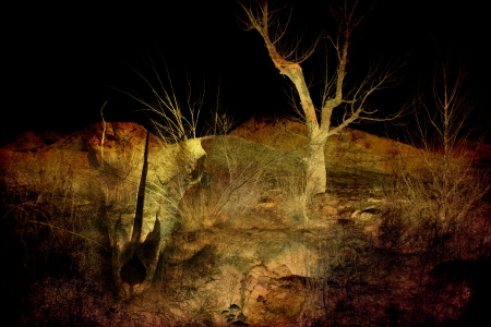 photomanipulation: Photomanipulation with bones and a stark landscape for an artistic look