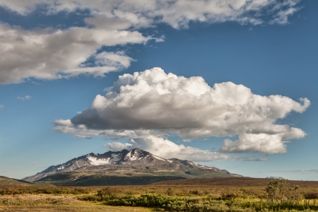 View of Yukon territory wilderness in summer with puffy clouds.