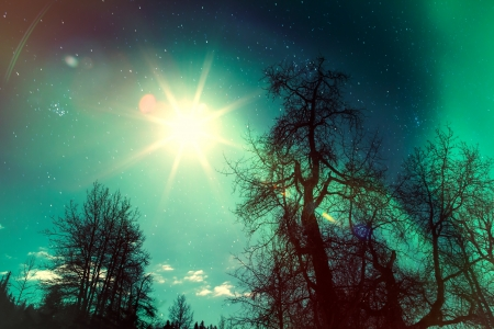 photomanipulation: Nature fantasy with trees, a sunburst, stars, and streaming lights created with photomanipulation.