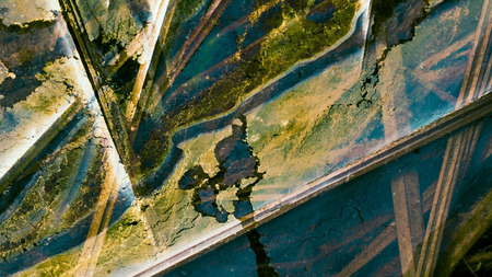 Abstract patterns formed by oil floating on water with grass stems. Imagens