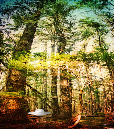 disco volante: Disco volante atterrato nella scena della foresta di fantasia.