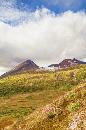 alpine tundra: High elevation alpine tundra in Yukon Territory Canada in summer with puffy clouds