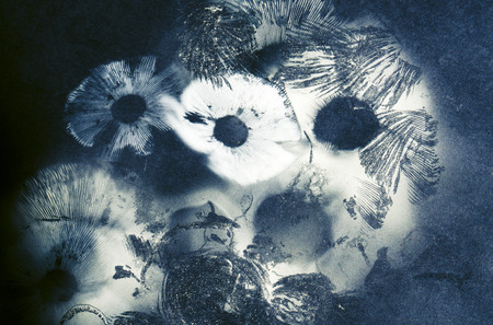 Abstract created from mushroom spore prints on paper. Stok Fotoğraf