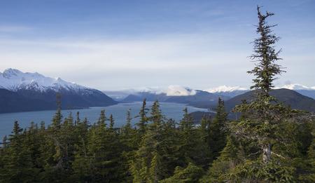 hemlock: Las vistas desde la cima de una colina con vistas a la entrada de Chilkat en el sudeste de Alaska.