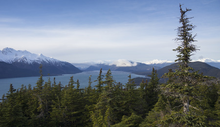 southeast alaska: Views from the top of a ridge overlooking the Chilkat Inlet in Southeast Alaska.