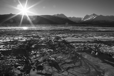 southeast alaska: Klehini river beach in Southeast Alaska with driftwood shadows from a setting sunburst in black and white.
