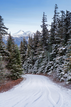 southeast alaska: Narrow tree-lined mountain road in Southeast Alaska in winter with fresh tire tracks and snow covered peaks in the background. Stock Photo