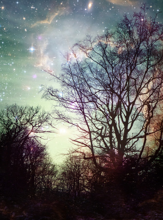 photomanipulation: Winter tree silhouettes with a colorful fantasy space sky.
