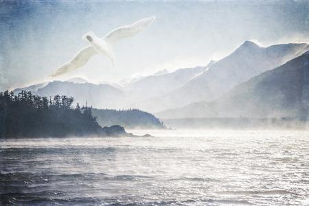 mare agitato: Gabbiano sopra il mare di massima in una giornata ventosa nel sud-est dell'Alaska processato con sovrapposizioni di texture per un look artistico. Archivio Fotografico