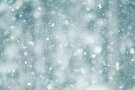 snow falling: Snow falling abstract with a shallow depth of field for a dreamy look.