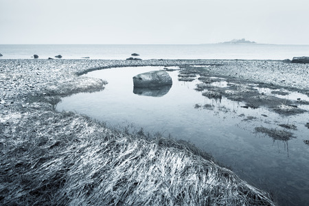 inlet: Chilkat Inlet beach in Alaska in fog after a light snow