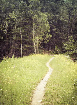southeast alaska: Trail through a meadow into a forest in Southeast Alaska with a sign and vintage coloration. Stock Photo