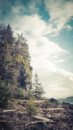 coloration: Cliff with trees near the Chilkat Inlet in Alaska with vintage coloration for an artistic look. Stock Photo