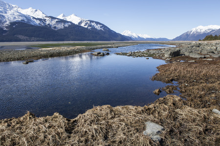 southeast alaska: Pools traped by the tides on Chilkat beach in Southeast Alaska. Stock Photo
