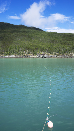 gill: Subsistence gill net set for catching salmon in the Lynn Canal in Southeast Alaska in summer.