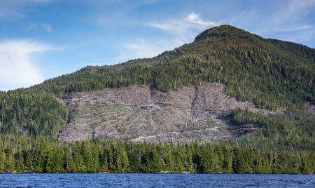 southeast alaska: Clearcut in Southeast Alaska north of Ketchikan as seen from a boat on the inside passage.