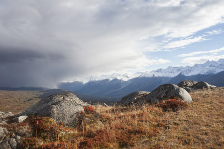 tundra: Fall colors in the high mountain tundra of British Columbia with storm clouds.