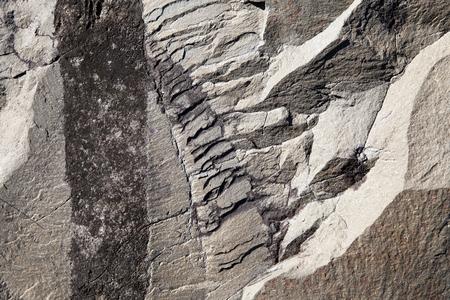 southeast alaska: Patterns on a rock surface found in Southeast Alaska.