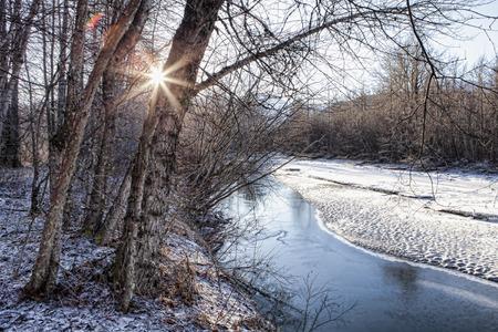 cottonwood tree: Sunburst through bare trees near an Alaskan creek in winter.