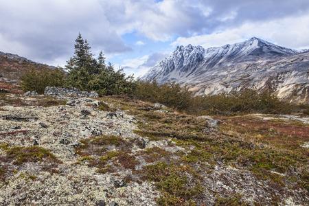 yukon: Yukon high elevation mountains in fall with cloudy skies. Stock Photo