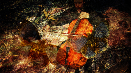 Surreal photomanipulations with a cello player and butterflies overlaid with tree branches and textures for an artistic look.