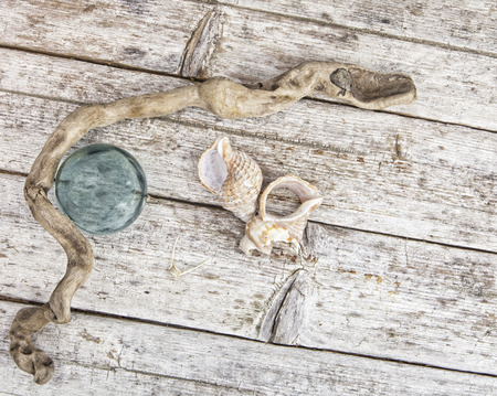 beachcombing: Object found by the sea such as driftwood, shells, and a glass fishing float on a rustic wooden table shot from above.