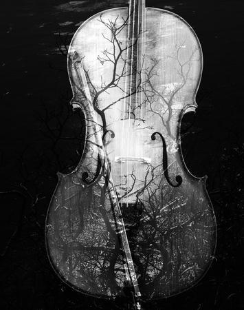 cellos: Cello with an artistic overlay of black and white branches.
