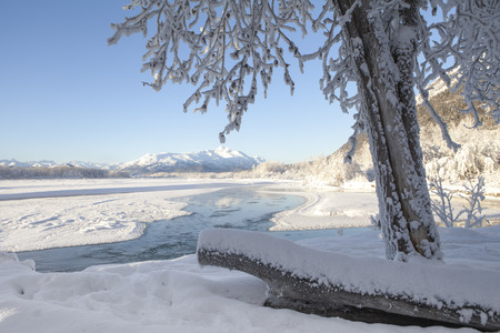 Bright blue skies after a snow storm on the Chilkat River in Southeast Alaska.
