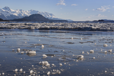 Ice chunks on the Chilkat river in Southeast Alaska on a sunny day.