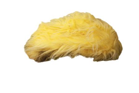 Fake yellow orange toupee hairpiece isolated on white. Stock Photo