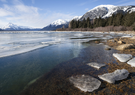 Melting ice in the Chilkat River Estuary near Haines Alaska in winter on a sunny day.