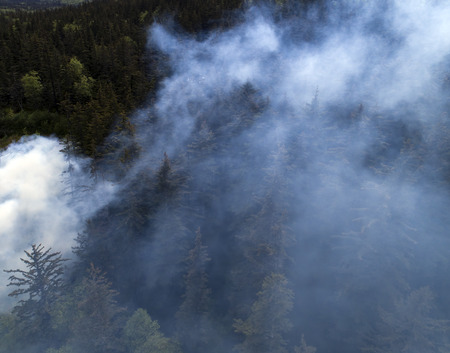 Aerial drone image of smoke in an Alaskan spruce forest.