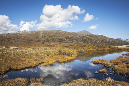 Puffy clouds reflected in a pond in the alpine tundra in British Columbia Canada in fall.