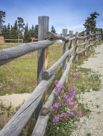 Rustic whole log fence around a horse pasture on a sunny day.