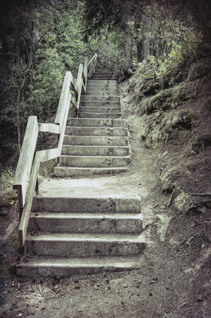 Old rustic stairs made out of concrete with a wooden railing in a forest.