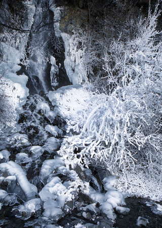 Frozen waterfall in Southeast Alaska with frost on the bushes.