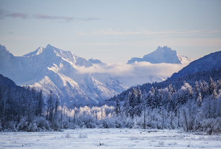 Chilkat mountains in Southeast Alaska with frost on the trees and a streak of low clouds near sunset. Stock Photo