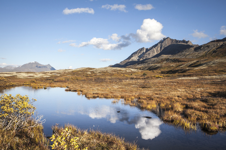 Cloud reflections in a pond in the tundra of British Columbia high elevation mountains in fall.