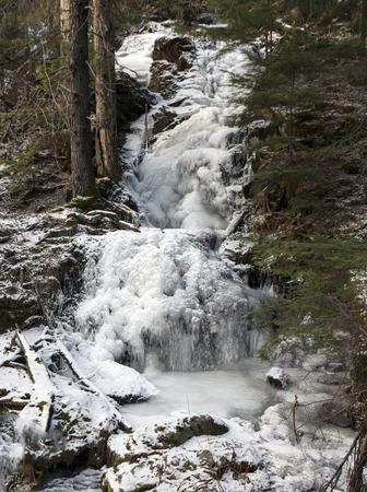 Frozen waterfall in old growth forest in Southeast Alaska.