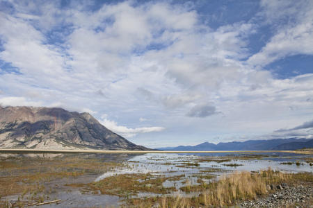 Marsh at one end of Kluane Lake in Yukon Canada in summer with dramatic clouds.