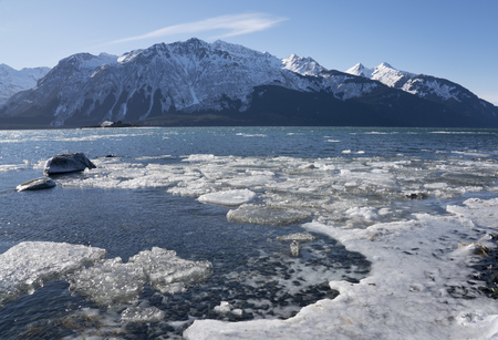 Ice floating in the Chilkat Inlet near Haines Alaska on a sunny winter day.