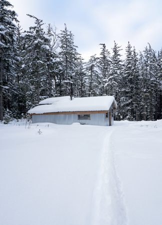 Metal sided garage with a path through the snow and forest in the background in rural Alaska in winter.