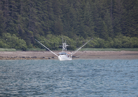 Fishing boat near the shore in Southeast Alaska with forest in the background. Stock Photo