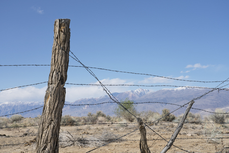 Rustic barbed wire fence with logs near Bishop California on a sunny day.