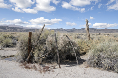 Rustic fencing using tree limbs and barbed wire in an old cattle ranch in the sage brush desert  of the west. Stock Photo
