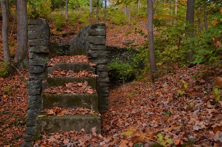 Mossy stone stairs to a bridge in the forest photo