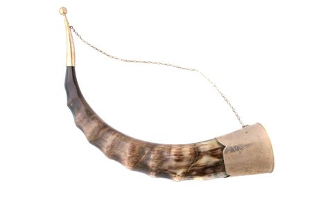 old drinking horn photo