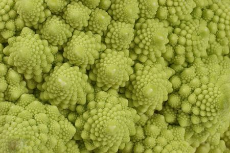 romanesco: green romanesco cauliflower i background