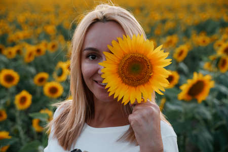 A beautiful young woman with blond hair holds a large sunflower flower in her hands and covers one eye with it. Against the background of a large field of sunflowers. Concept of walking in nature.