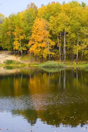 Autumn trees reflected in water photo